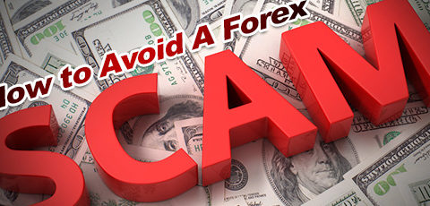 forex scam, forex scams brokers, forex trading scams companies, forex trading scam broker, forex peace army scam, forexpeacearmy scam, forex peace army signals, forex peace army scams signals, forexpeacearmy scams brokers, forex peace army forum, forex peace army best broker, forex peace army broker reviews, forex peace army calendar, forex peace army exential, forex peace army login, forex peace army signals, forex peace army xm,