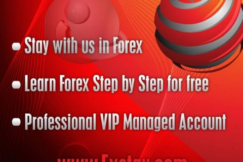 Forex trading hedge funds versus