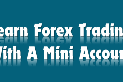 Mini forex accounts network
