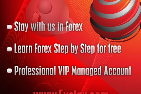 Managed forex funds reviews