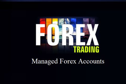 Best free binary options trading system